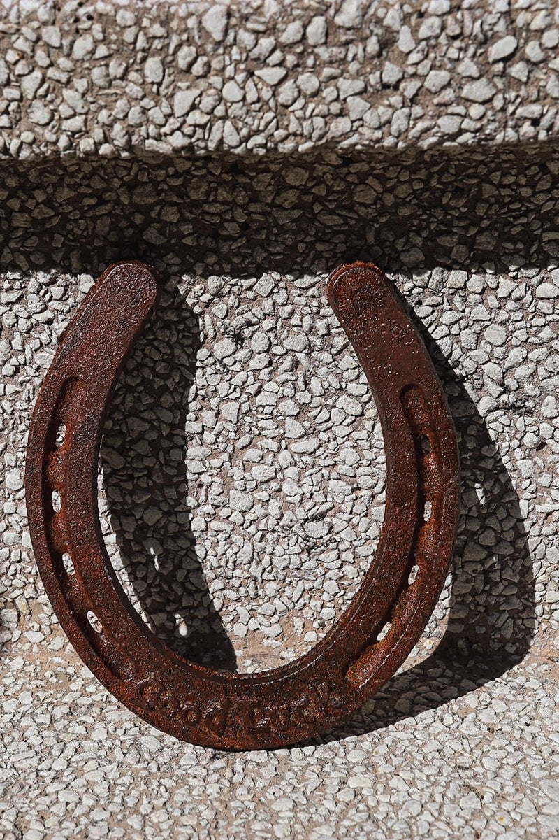 Cast Iron Horseshoe
