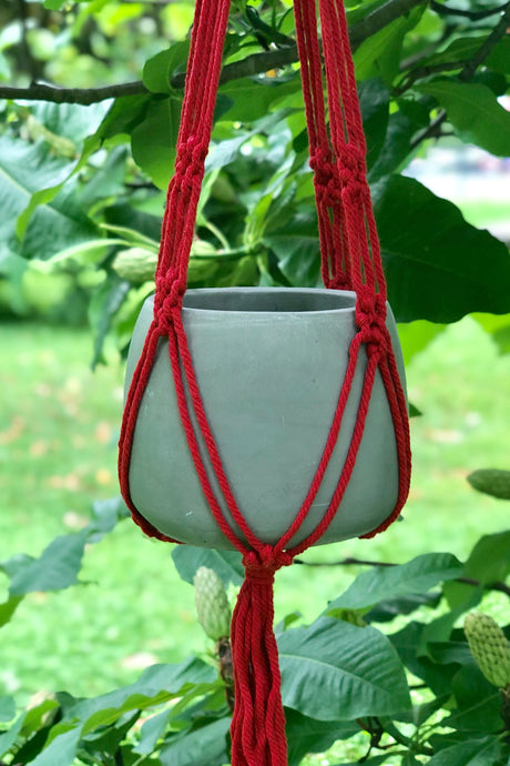 Macrame Cement Planter - Tigertree