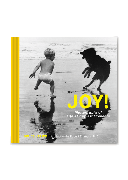 Joy: Photographs of Life's Happiest Moments - Tigertree