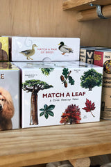 match a leaf memory game
