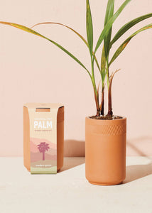 Terracotta Kit - Palm - Tigertree