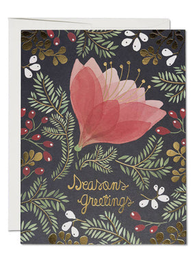 Amaryllis Holiday Card (Box of 8) - Tigertree