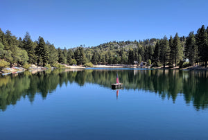 Explore the San Bernardino Mountains!