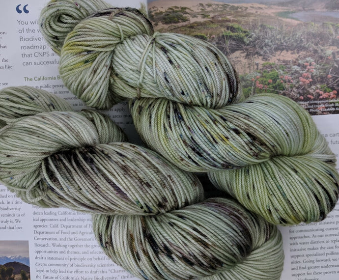 COASTAL SAGE - Merino Twist