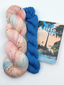 EVERGLADES NATIONAL PARK with Biscayne mini skein- sock kit