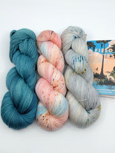 Copy of EVERGLADES & MANATEES II- 3 Skein Set