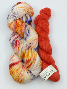 HUMMINGBIRD LOVE with Tangerine- Cash Merino kit
