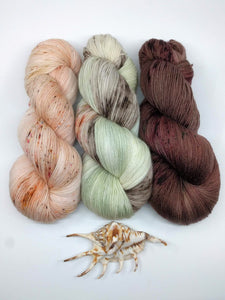 PINNIPED PASSION-  Shawl kit