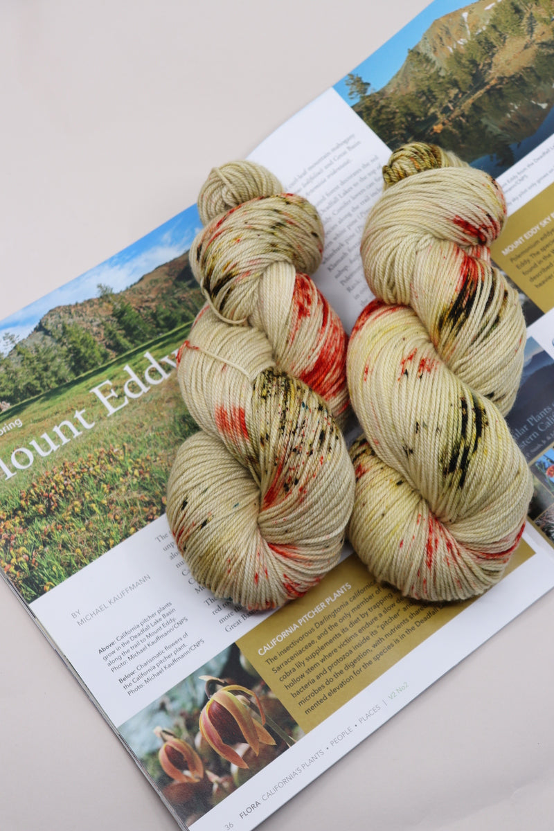 MOUNT EDDY'S PITCHER PLANT- Cash Merino