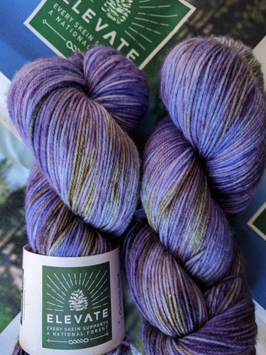 PENSTEMON - Deluxe Sock