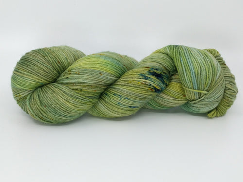 SHORELINE MARSH- Merino Twist