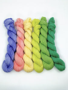 TULIP & DAFFODIL Mini-Skeins- set of 6