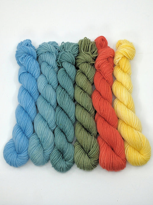 WHITEWATER ADVENTURER Mini-Skeins- set of 6