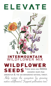 Wildflower Seeds - MOUNTAIN MIX
