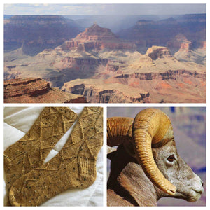 Outfitter Tour - Grand Canyon **PREORDER**