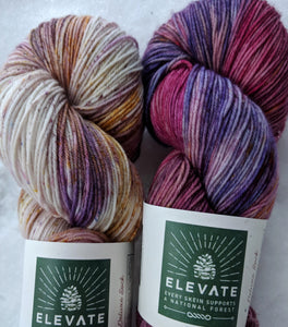 PASSION & LUPINE- 2 Skein Set