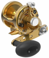 Avet SX 5.3 : 1 Lever Drag Casting Reel (Gold) JB Tackle
