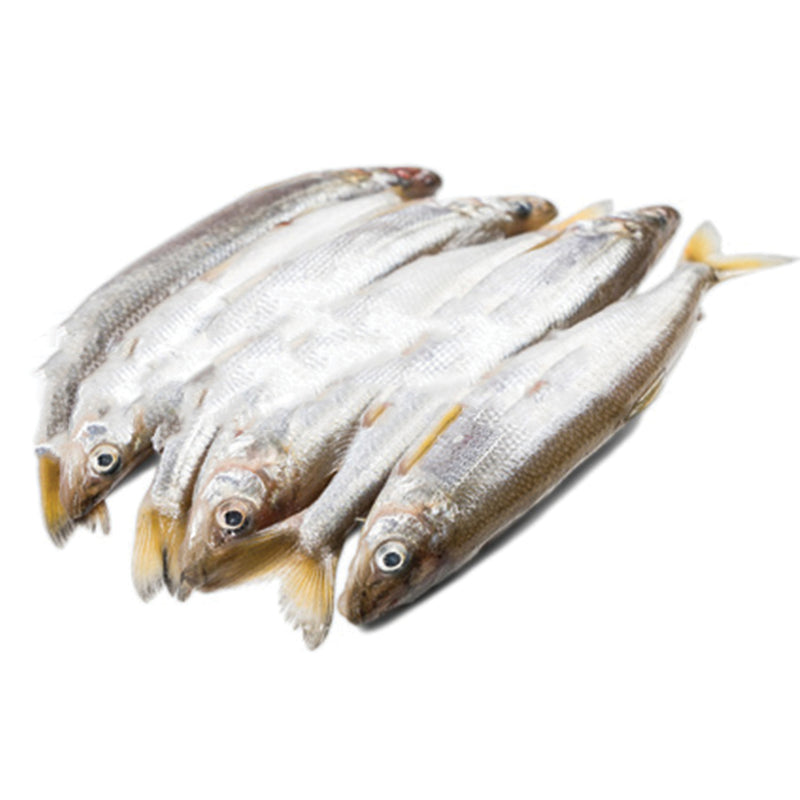 Frozen Smelt & Peruvian Spearing