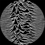 Joy Division Unknown Pleasures Slipmat