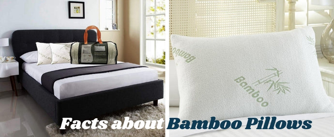 Get an Eco-friendly Sleep with Bamboo Pillows!