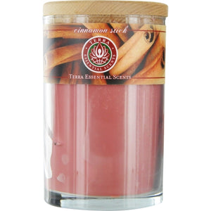 CINNAMON STICK by Terra Essential Scents SOY CANDLE 12 OZ TUMBLER. A SOOTHING, SPICY BLEND OF CINNAMON & SPICE OILS. BURNS APPROX. 30+ HOURS