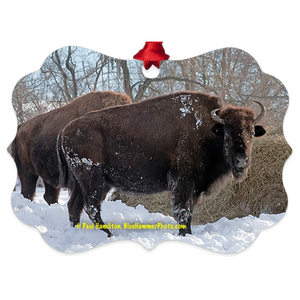 "tree ornament (4"" x 3"")-- snow bison"