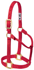 Non-Adjustable Weanling Halter