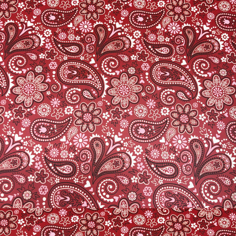 Red Paisley HTV