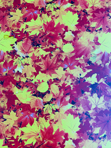 Fall Leaves Pattern HTV