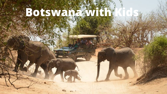 Botswana with Kids