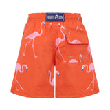 Red Flamingos- Baby Swim Shorts
