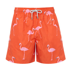 Red Flamingos - Men's Designer Swim Shorts - RobertandSon