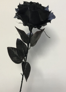 Long stemmed black luxury gothic rose - each