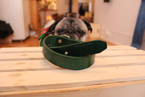 The Ore Sniffer Dog Collar