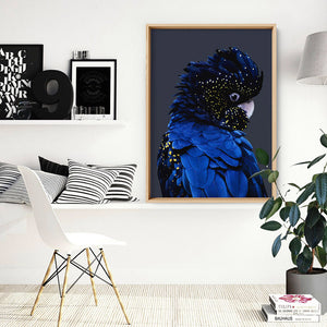 Black Cockatoo (indigo tones) - Art Print, Stretched Canvas, or Framed Canvas Wall Art
