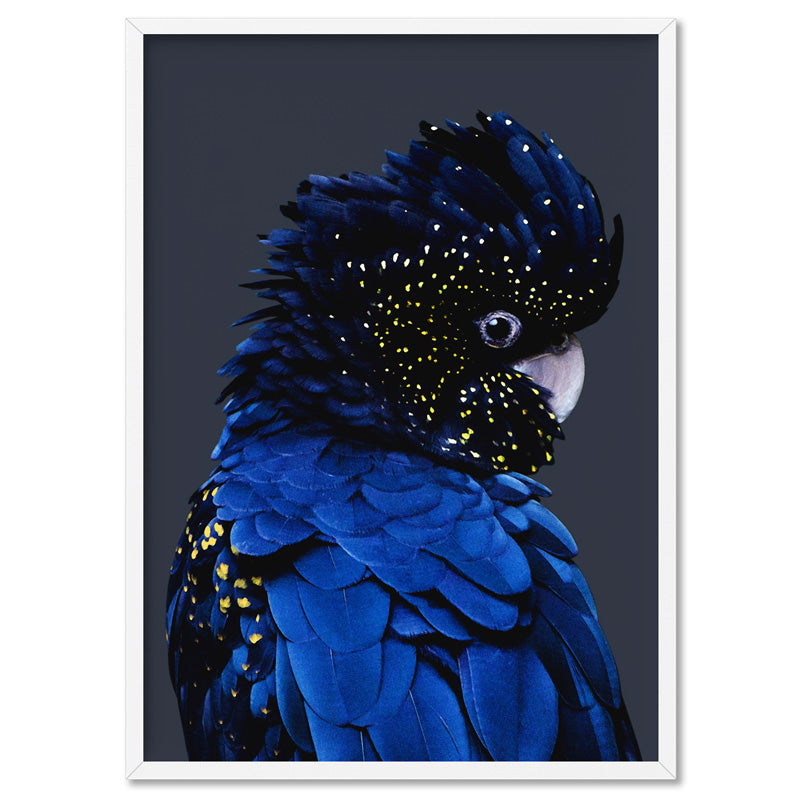 Black Cockatoo (indigo tones) - Art Print