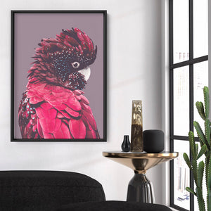 Red Cockatoo - Art Print, Stretched Canvas, or Framed Canvas Wall Art