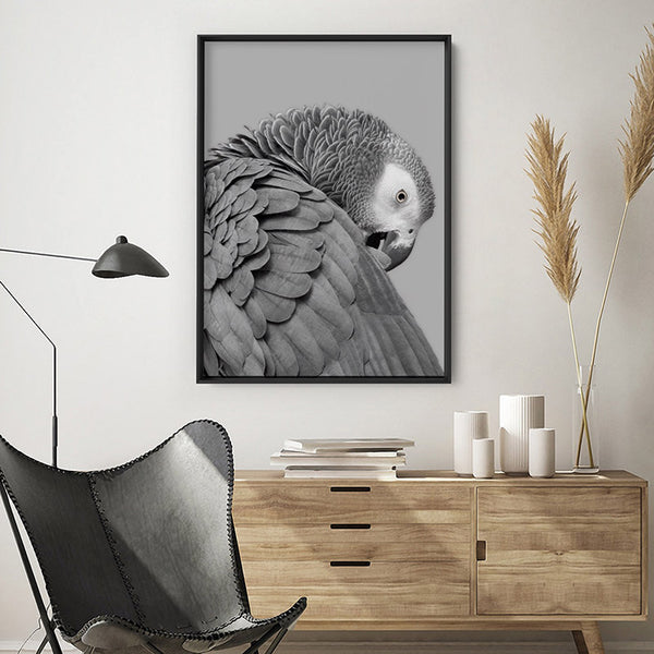 Grey Parrot - Art Print, Stretched Canvas, or Framed Canvas Wall Art