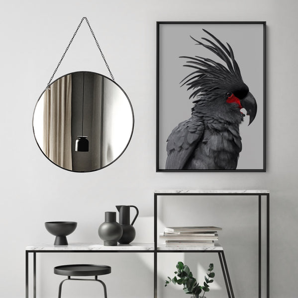 Black Palm Cockatoo - Art Print, Stretched Canvas, or Framed Canvas Wall Art