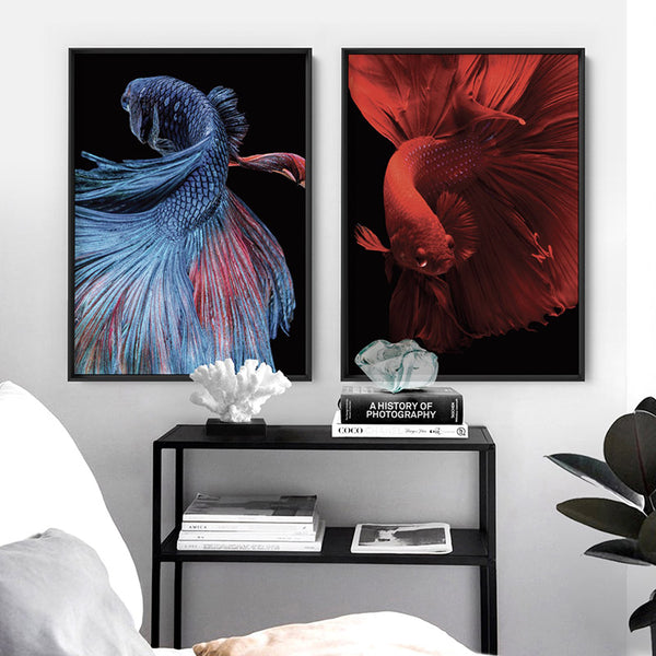 Japanese Red Betta Fighting Fish - Art Print, Stretched Canvas, or Framed Canvas Wall Art