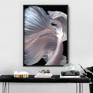 Japanese White V1 Betta Fighting Fish - Art Print