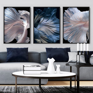 Load image into Gallery viewer, Japanese Blue Betta Fighting Fish - Art Print