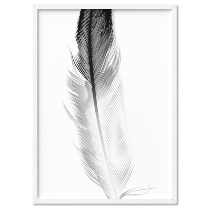 Feather Black & White I - Art Print