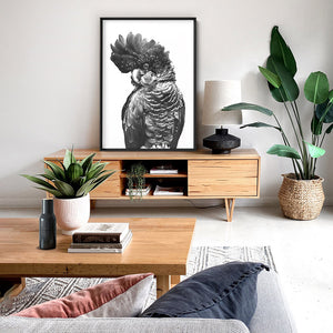 Black Cockatoo (black & white) - Art Print
