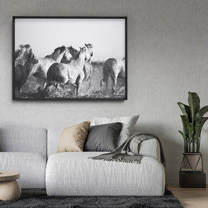 Load image into Gallery viewer, Horses in the Sea in B&W - Art Print