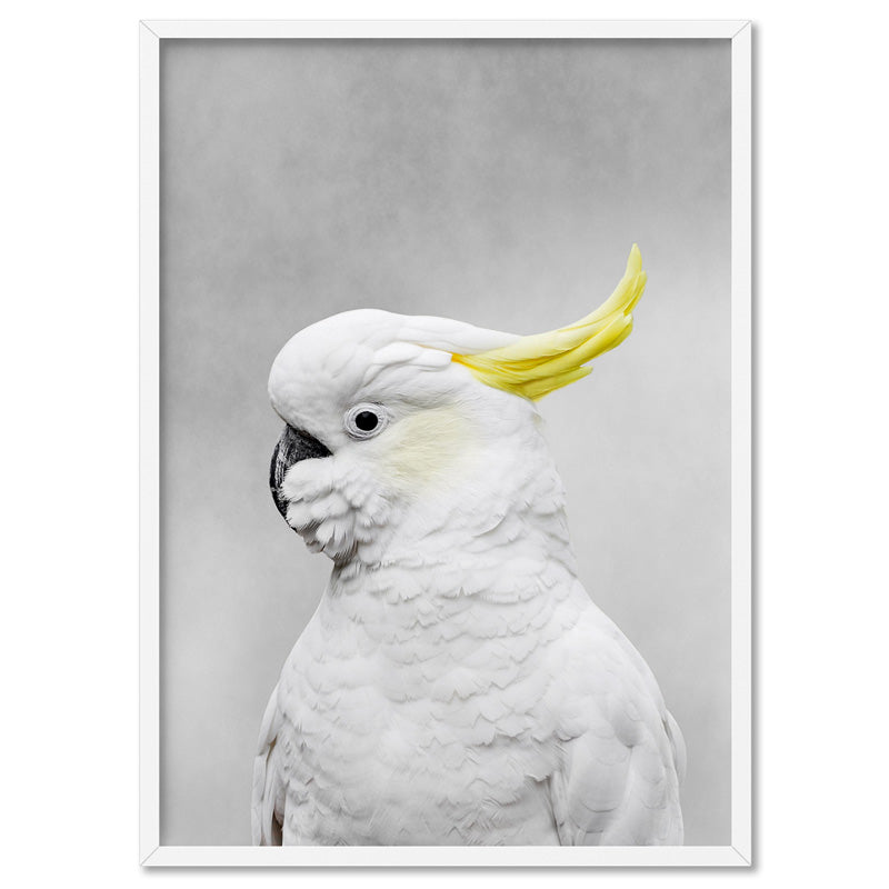 White Sulphur Crested Cockatoo I - Art Print