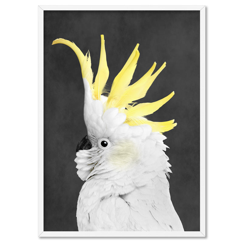 White Sulphur Crested Cockatoo II - Art Print, Stretched Canvas, or Framed Canvas Wall Art