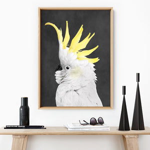 White Sulphur Crested Cockatoo II - Art Print, Stretched Canvas or Framed Canvas Wall Art, Shown inside a frame
