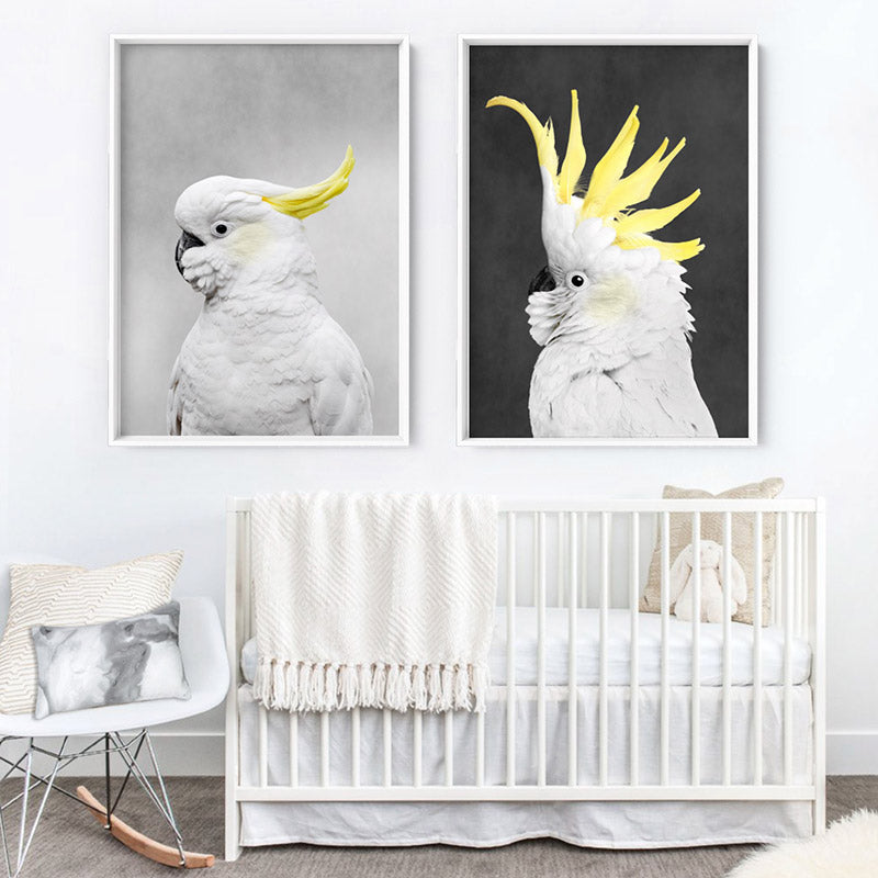 White Sulphur Crested Cockatoo II - Art Print, Stretched Canvas or Framed Canvas Wall Art, Shown framed in a room mockup