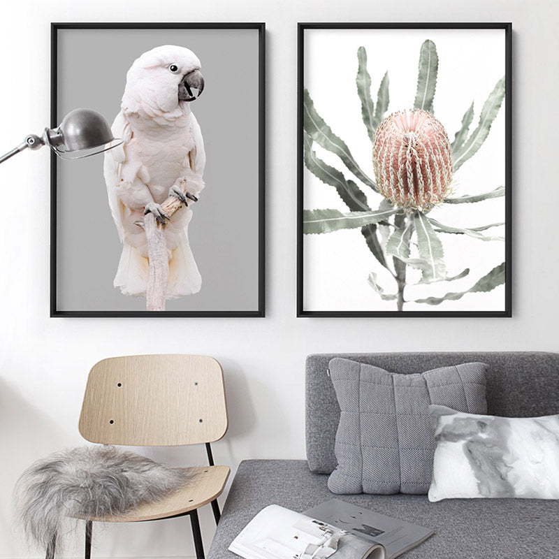 Salmon Crested Cockatoo - Art Print, Stretched Canvas or Framed Canvas Wall Art, Shown framed in a room mockup